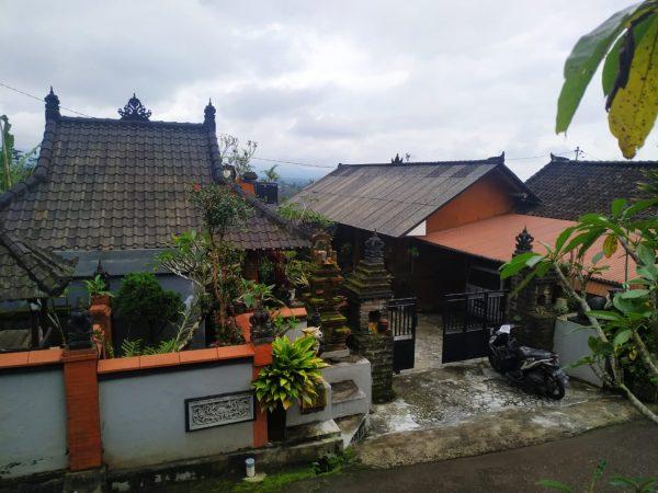 Rumah lahan 4,5 are di kawasan sejuk perkemahan Baturiti-1baliproperty-ID1bp055
